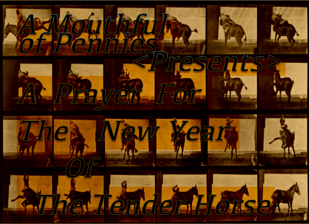 a prayer for the new year of the tender horse?w=580&h=421 a mouthful of pennies a mouthful of pennies pennies in the fuse box at bayanpartner.co