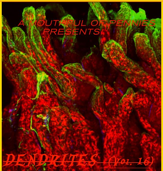 Dendrites-16-CVR