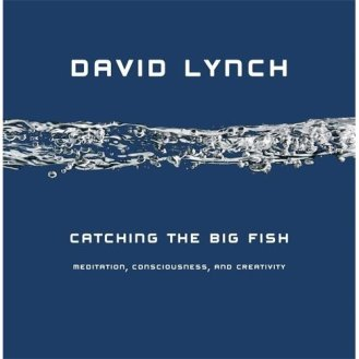 Catching the Big Fish: Meditation, Consciousness, and Creativity by David Lynch
