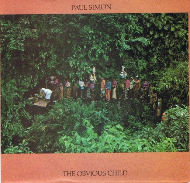 [The Obvious Child – Paul Simon]