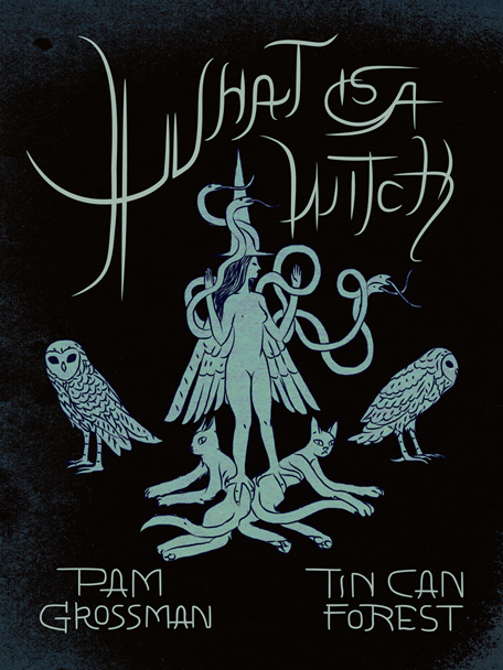 What Is a Witch book Text by Pam Grossman Images by Tin Can For